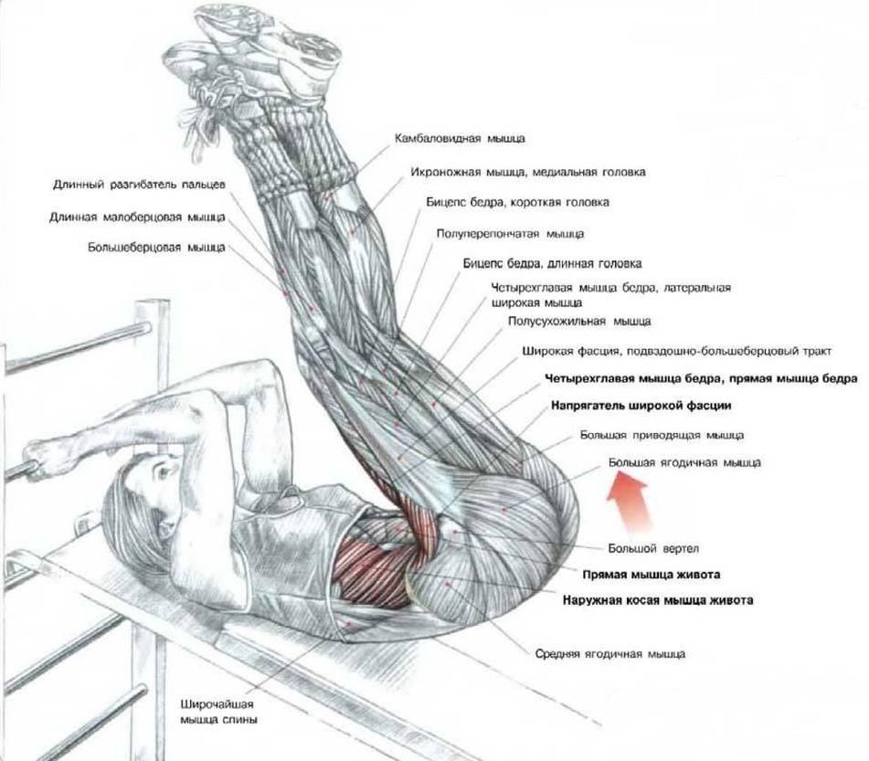 Подъемы ног на наклонной доске